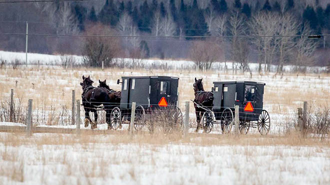 The Mennonites Of Algoma East Of Sault Ste Marie