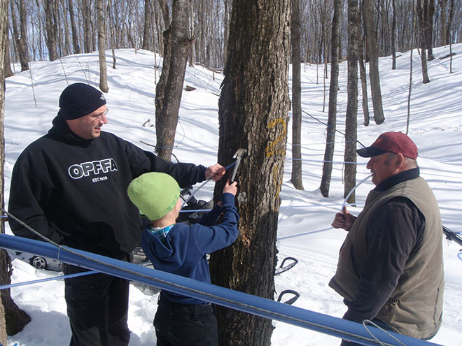 mountainmapleproducts tapping