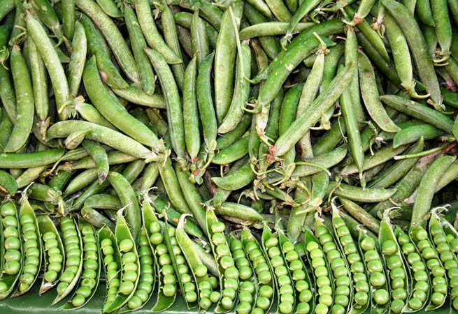 fresh green beans peas