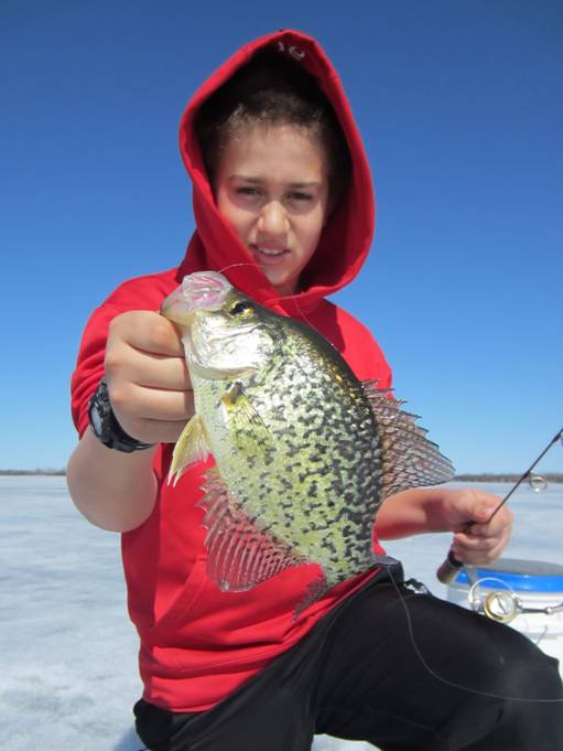 ontario crappies