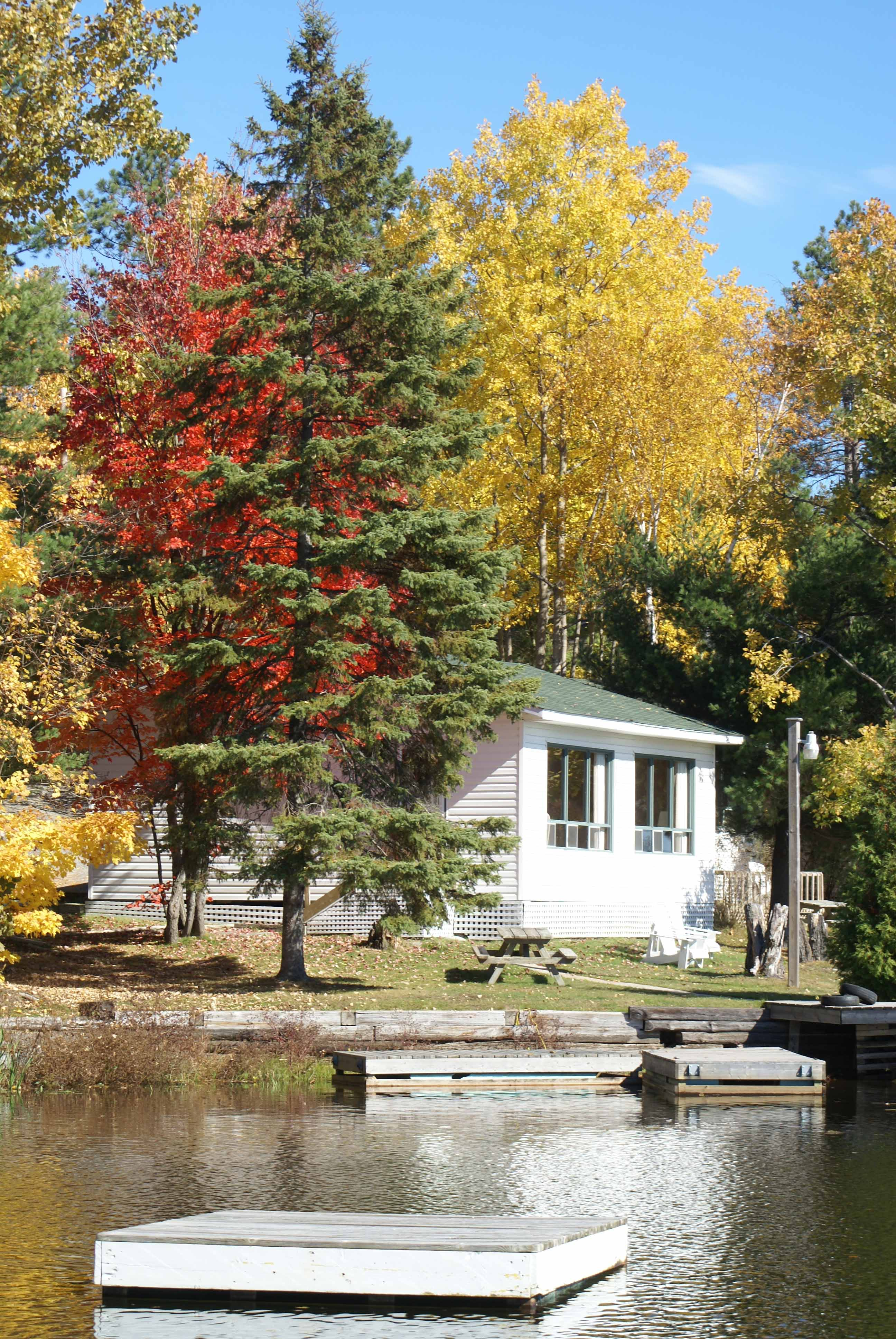 West Arm Cottage in the fall-1