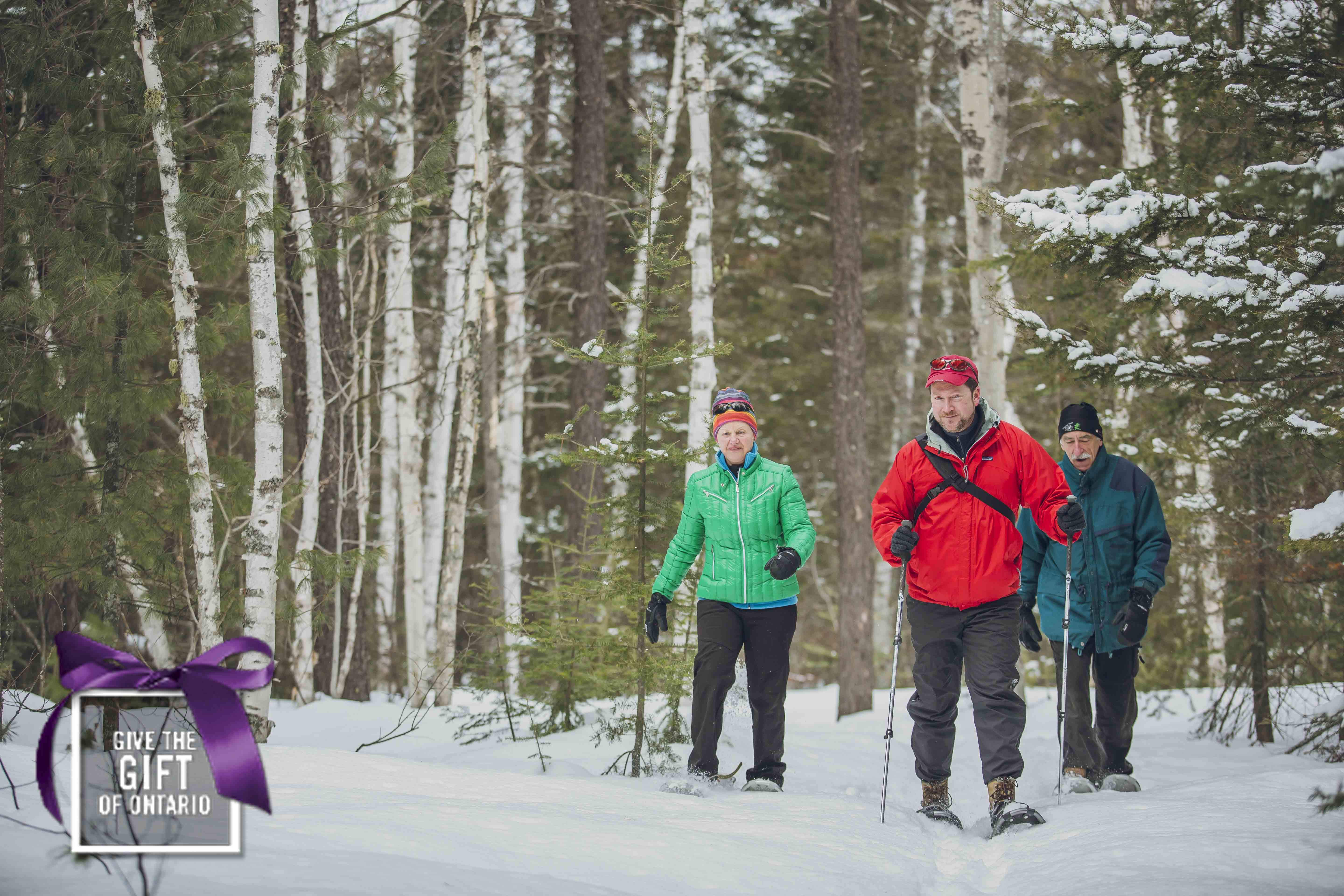 snowshoeing-winter