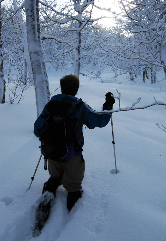 Algoma-backcountry-snowshoeing-Conor-Mihell