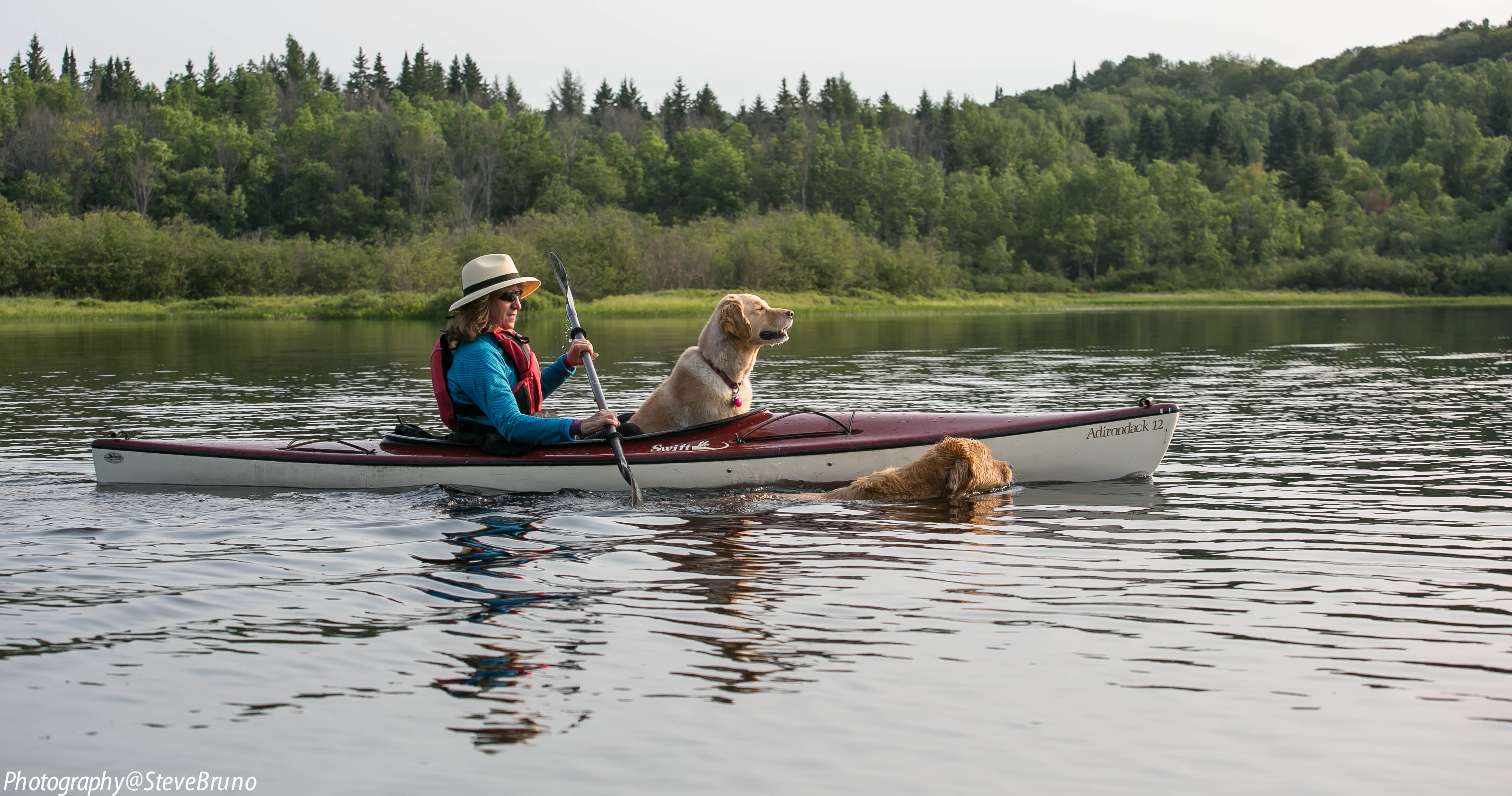 Arrowhead Provincial Park  has a large pet exercise area with two beautiful beaches where your dog can swim and play (or go kayaking).