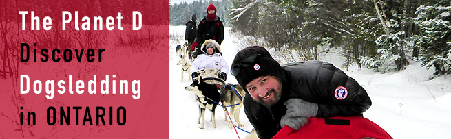 Discover Dogsledding in Ontario