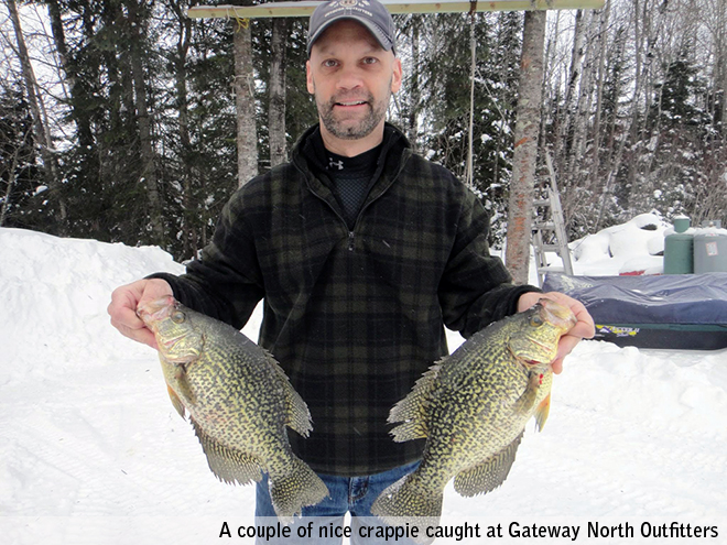 Some nice crappies caught at Gateway North Outfitters