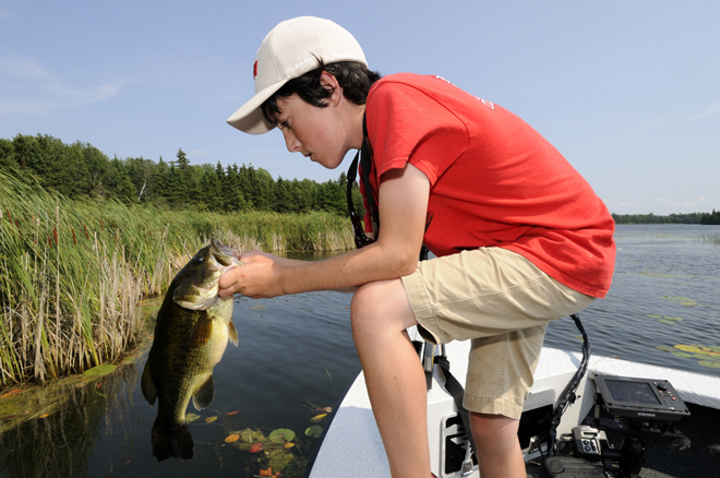 Great looking largemouth bass!
