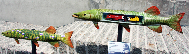 The Lake of the Wood's Railroad Museum's muskie is unfortunately not for sale.