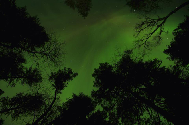 Northern Lights in Quetico Park