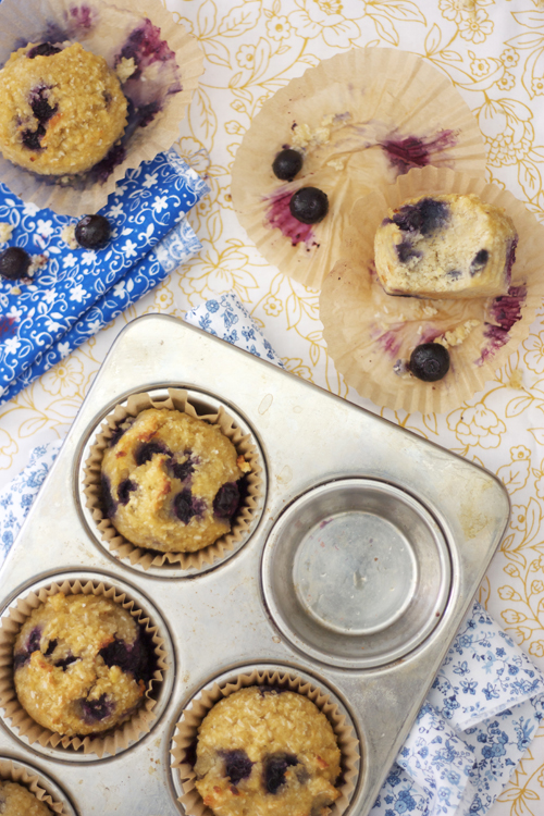 Shredded Coconut Blueberry Paleo Muffins by the Spunky Coconut
