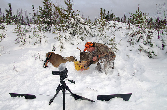 Filming a whitetail deer hunt