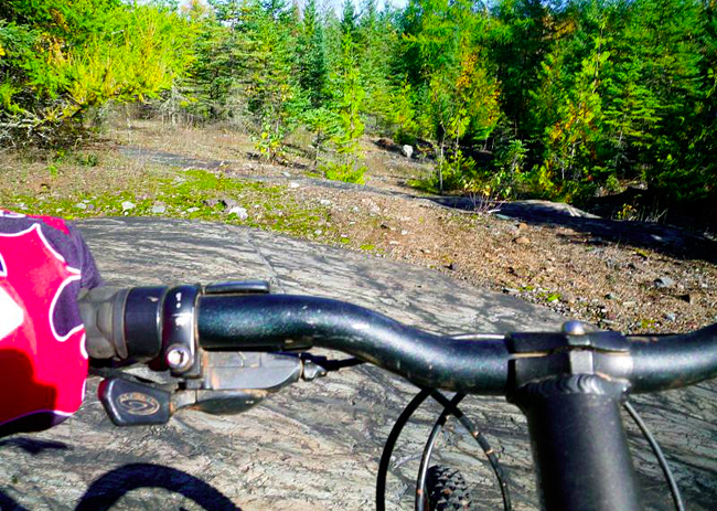 Mountain Biking at the Charleson Recreation Area
