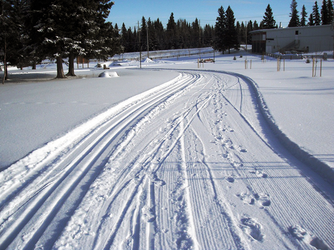 The trails at Centennial Park are perfect for beginner skiers.