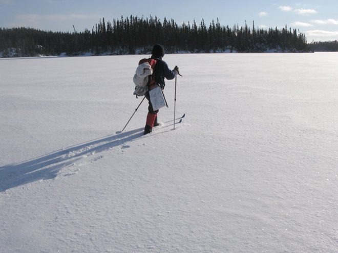 Red Lake Outfitters can outfit you for a day trip or multi-day ski trip in the back country
