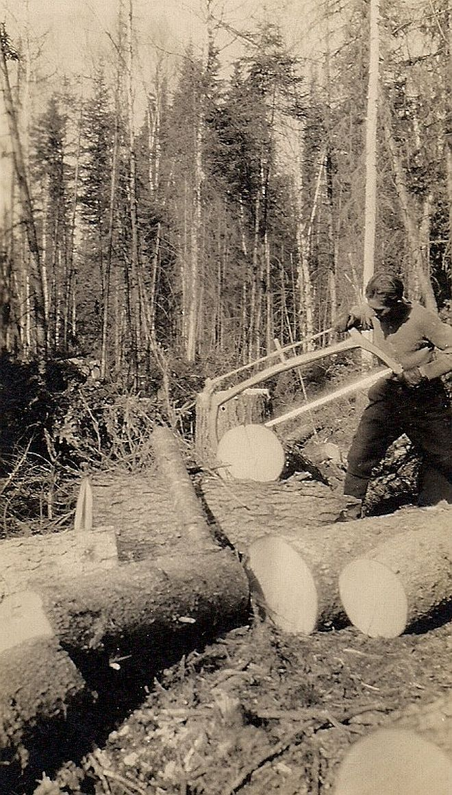 Cutting wood with a swede saw