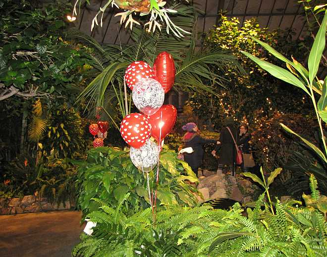 Conservatory at night 2