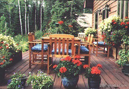 Mountain Meadow Outdoor Dining