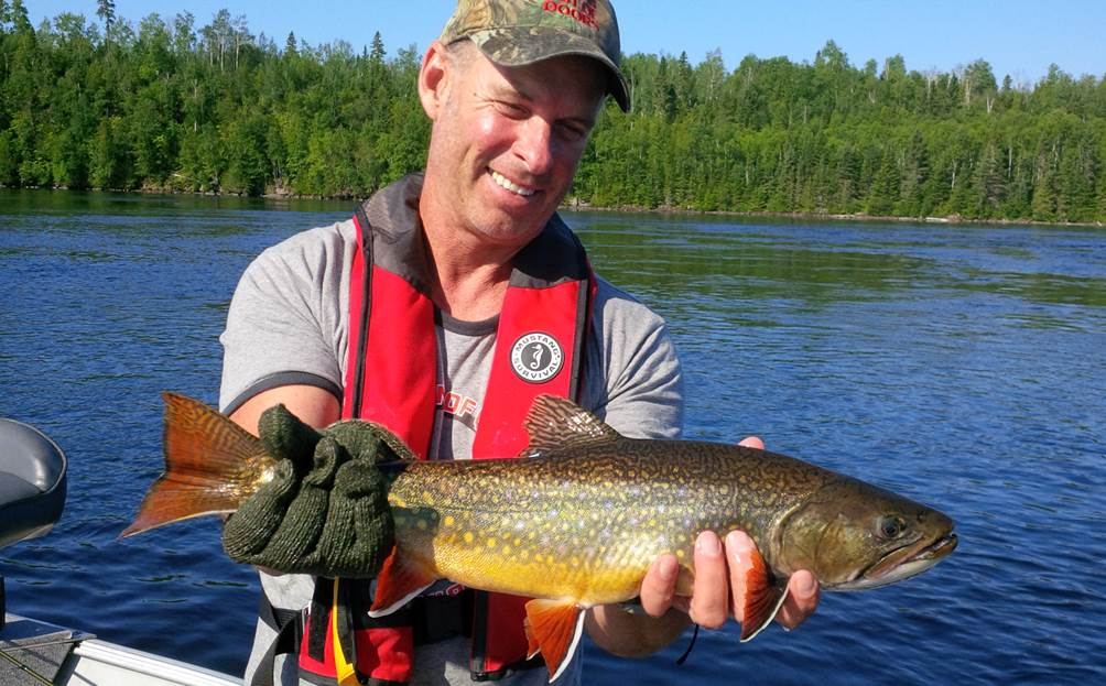 Gord Ellis Brook Trout