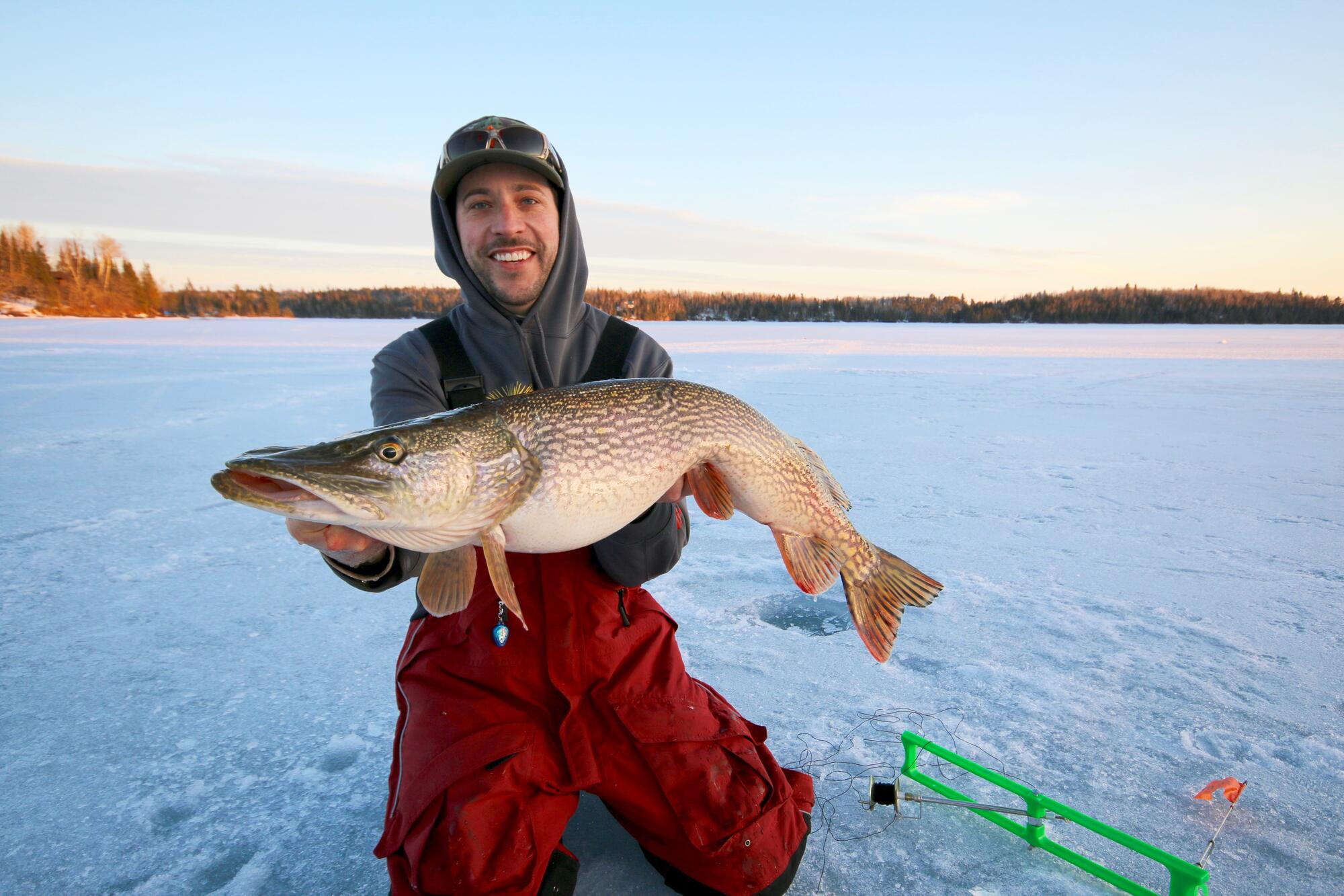 How to ice fish with tip ups northern ontario travel for Gustafson s smoked fish