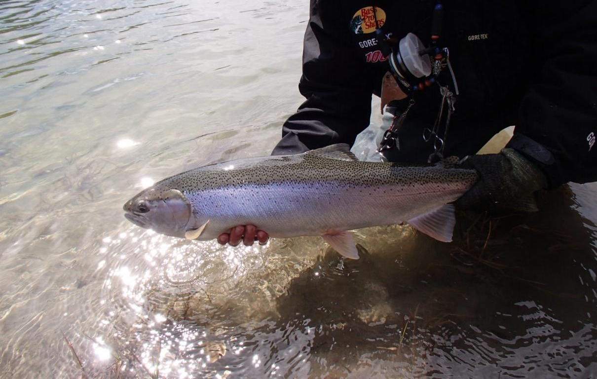 Hunting, fishing: a selection of sites