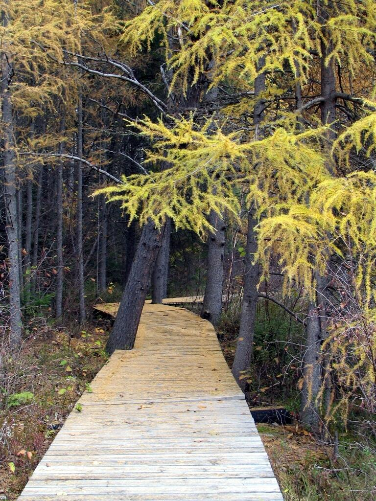 Plan A Road Trip >> Hiking and Biking Trails in Timmins | Northern Ontario Travel