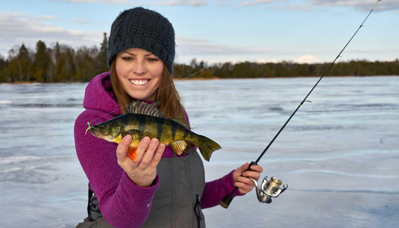 How to introduce lure in the winter: important tips