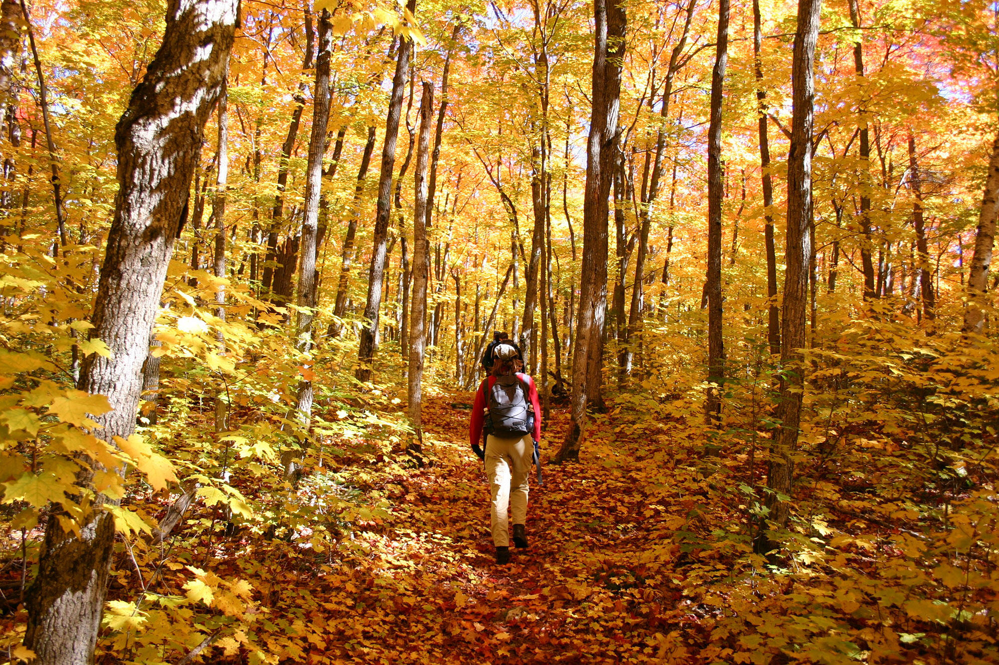 Five Fall Hiking Trails in Algoma Country That You'll Love ...