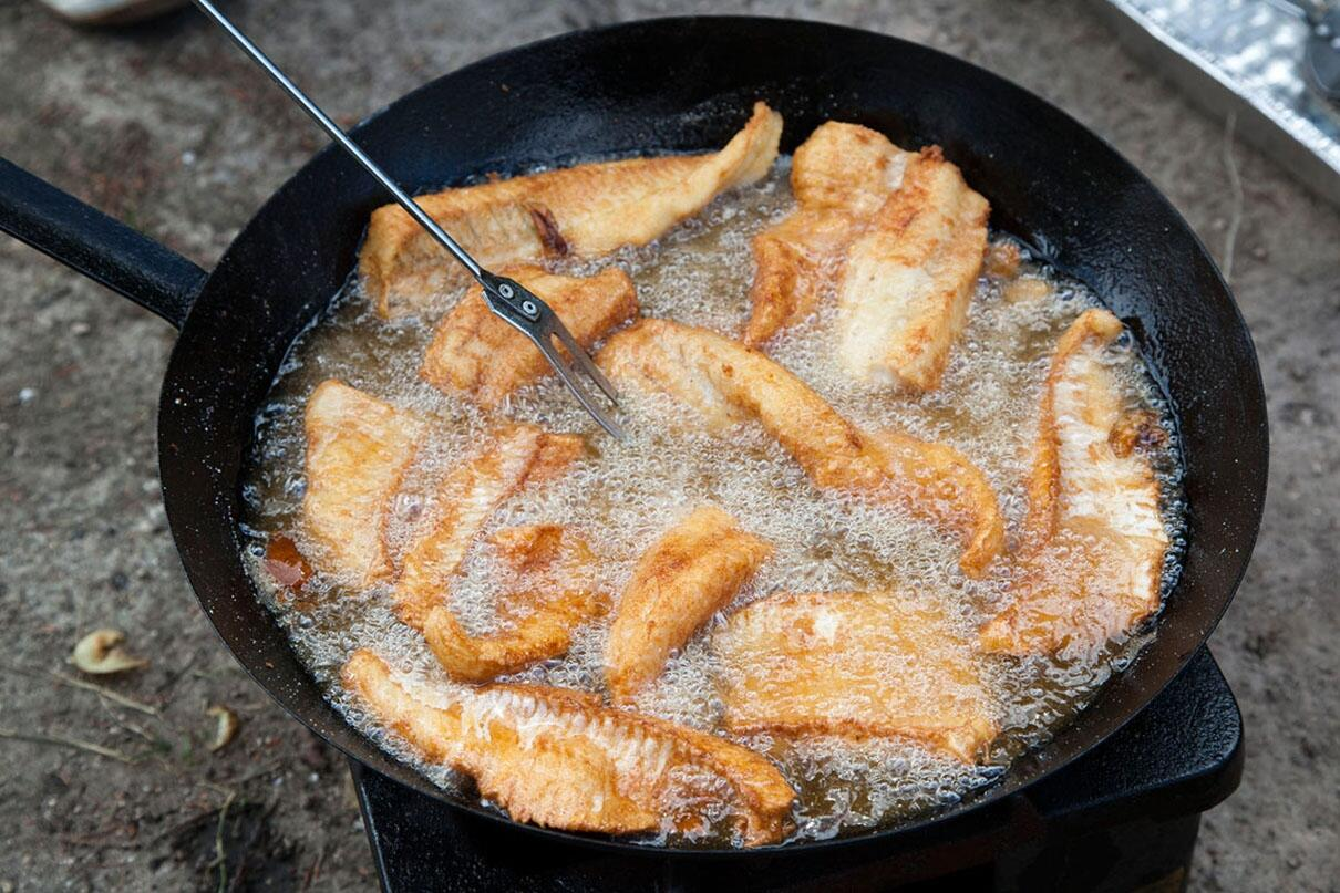 Master the campfire fish fry with these simple tricks for Best fish for frying