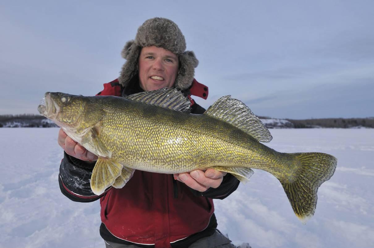 Ontario 39 s world record winter walleye northern ontario for Fishing for walleye