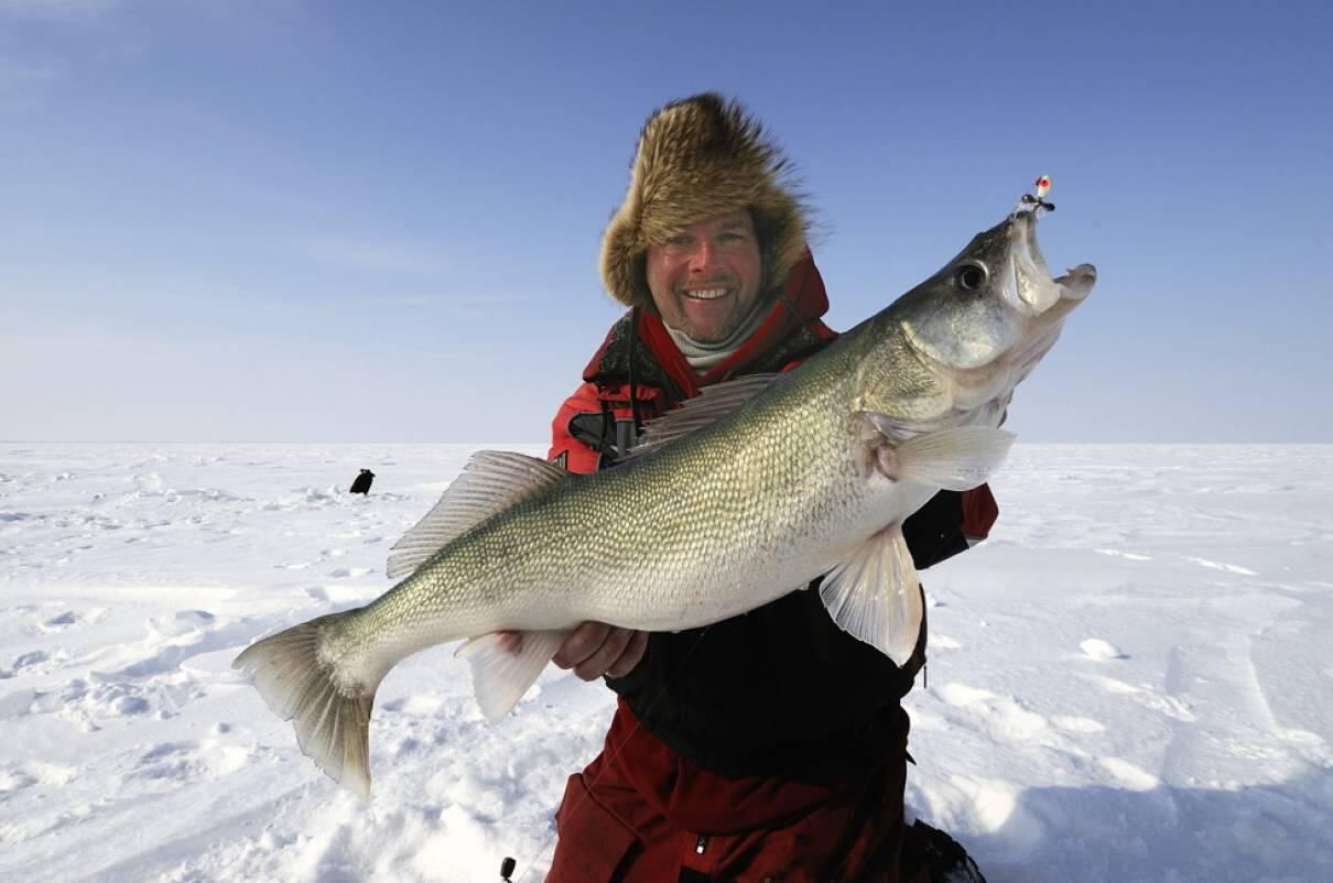 Official ice fishing in ontario report weekly for Lake ontario fishing report