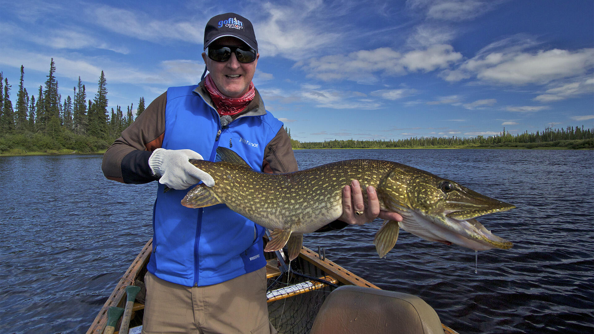 Northern ontario fly in pike fishing at pym island lodge for Ontario fly in fishing