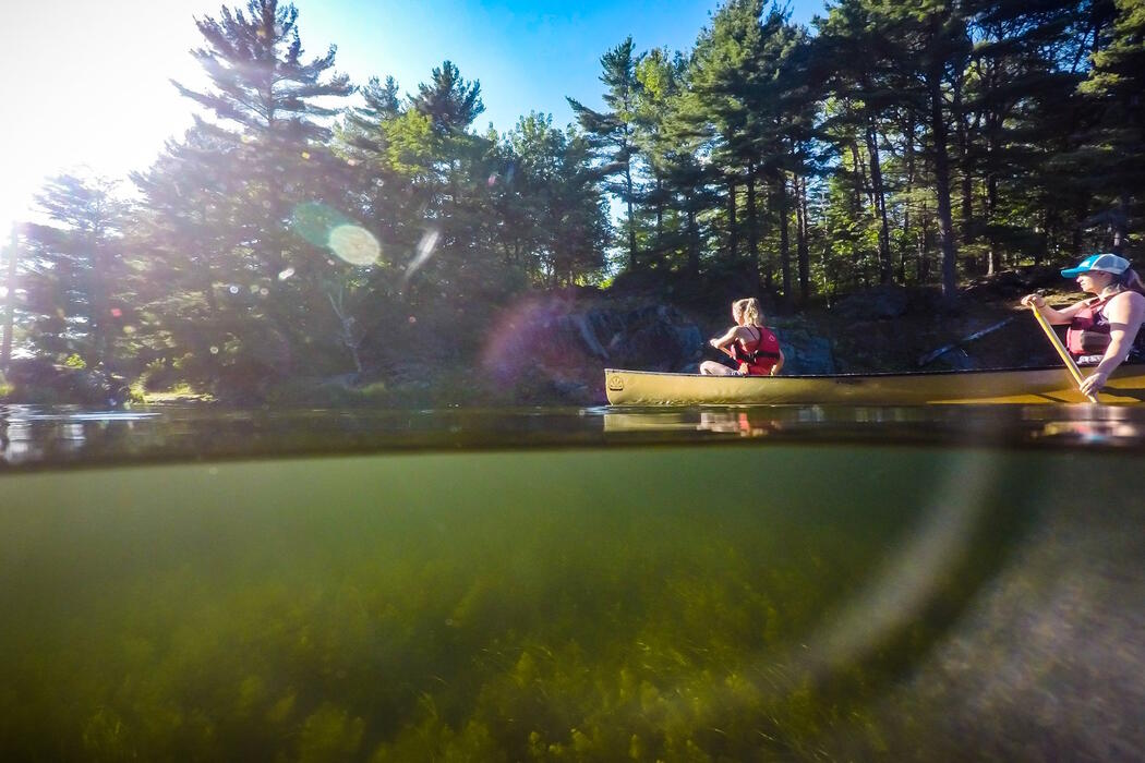 Image shows underwater view as well as two people paddling a yellow canoe on a lake.