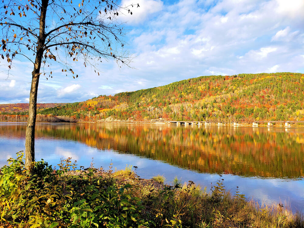 Beautiful fall colours reflecting on a wide river.