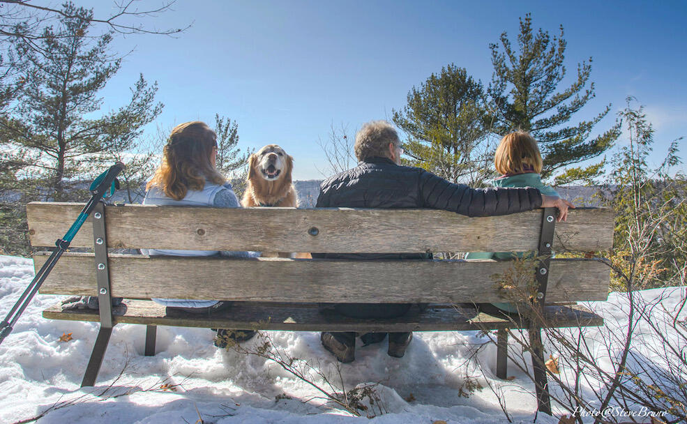 Three people sitting on a bench looking at view and a golden retriever looking back