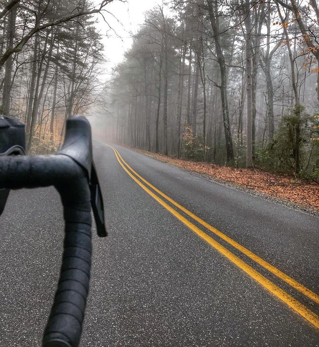 Handle bar of bicycle travelling down a paved road in foggy forest.