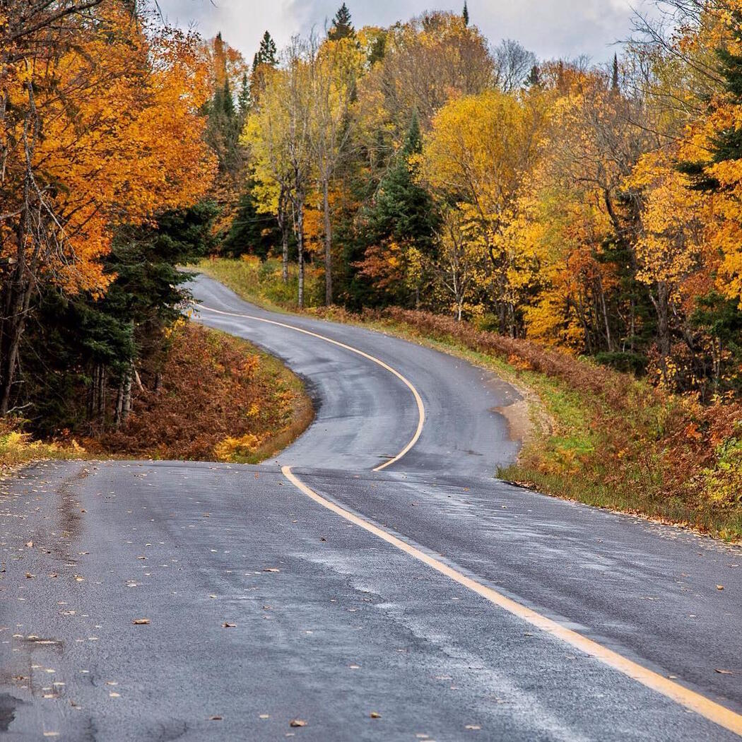 Paved two-lane highway surrounded by colourful fall leaves on trees.