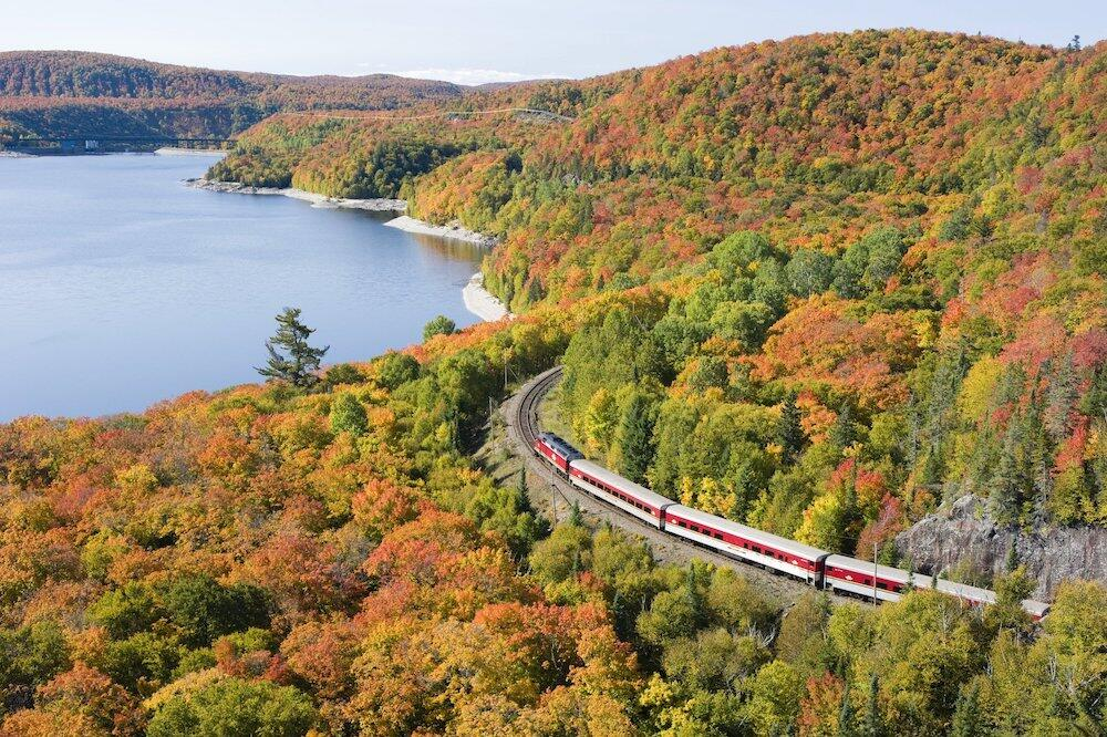 Train winding around hill of vibrantly coloured leaves in the fall.