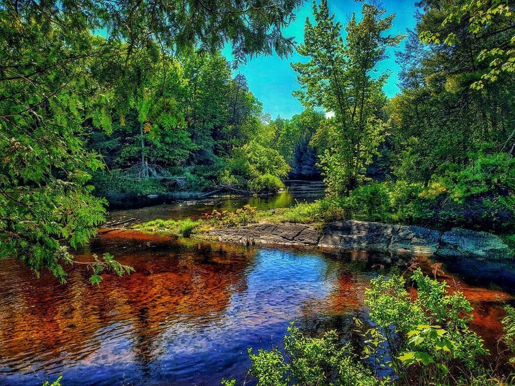 Shallow river flowing around a curve, with a rocky shoreline lined with vibrant green trees.