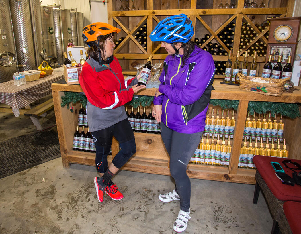 Two cyclists looking a berry wine inside Boreal Berry Winery.