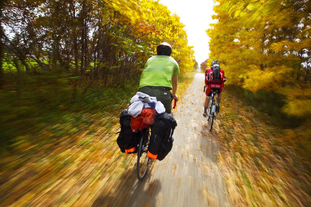 Cyclists with loaded bikes ride on a rail trail surrounded by fall colours.
