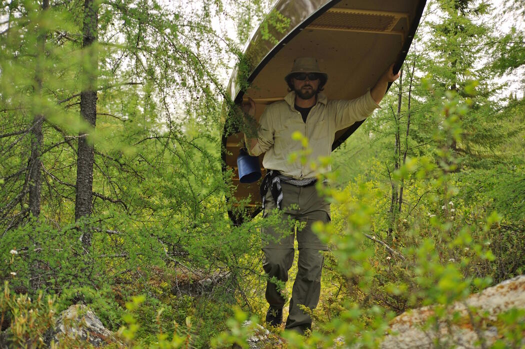 Man portaging a canoe on a forest trail.