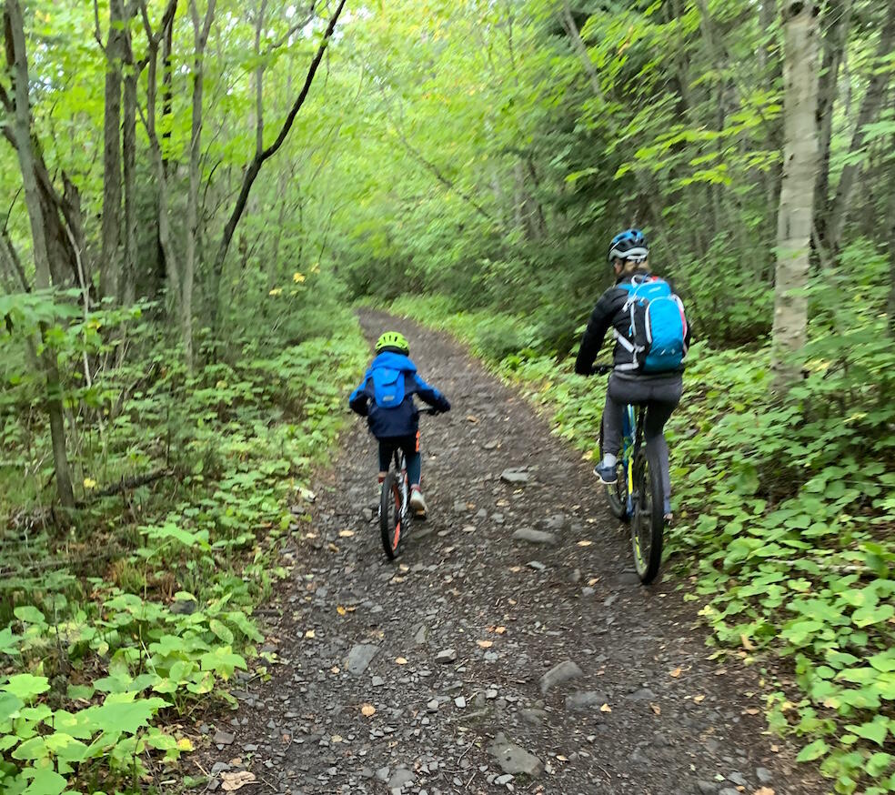 Two people cycling on a gravel path through the forest