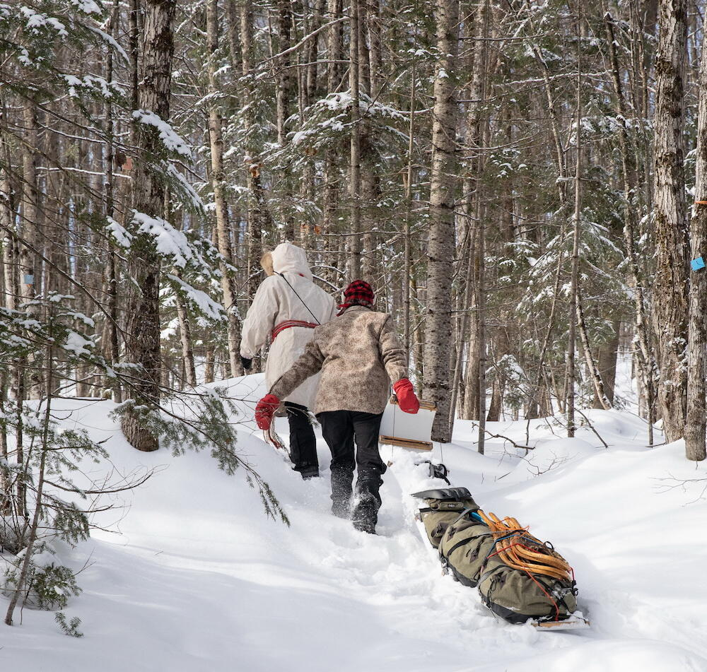 Two people pulling a tobaggan in woods in winter.