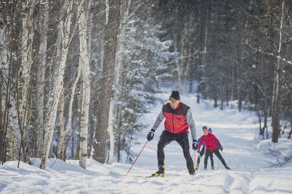 People skate skiing on a snow-covered trail in a forest.