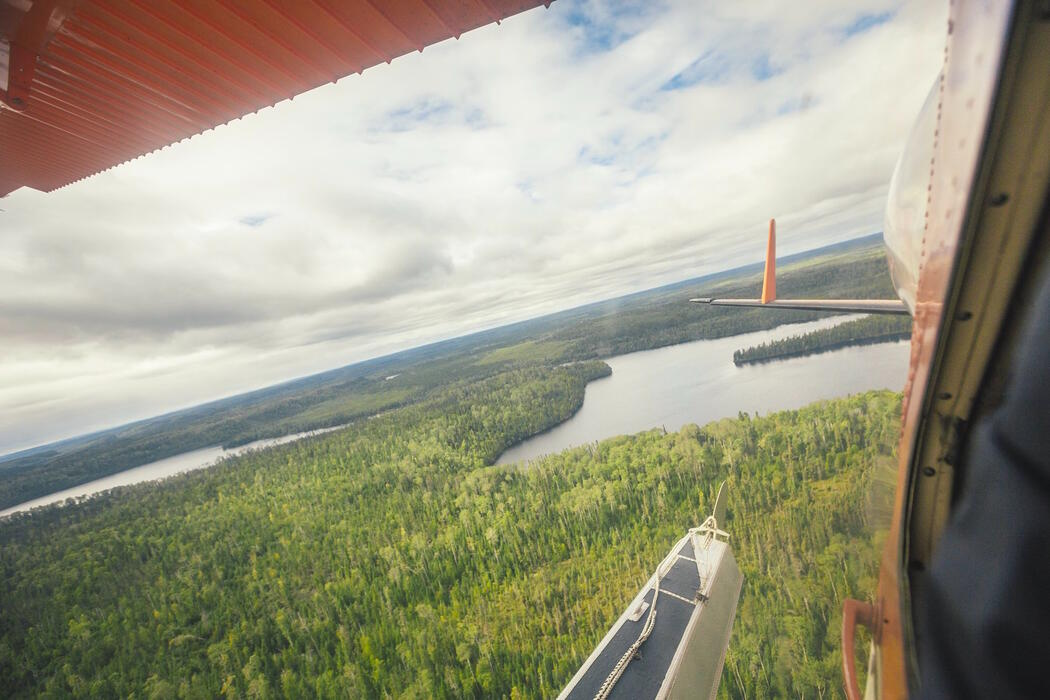View of boreal forest and lake from a float plane.
