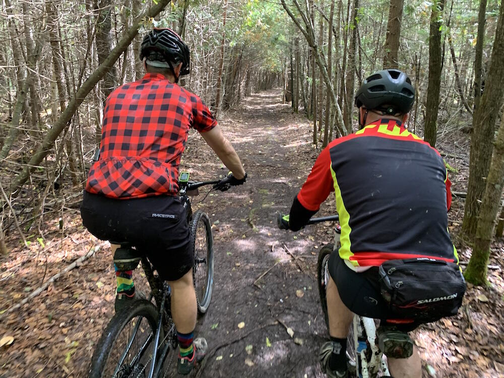 Looking at the backs of two people riding mountain bikes on a trail in forest.