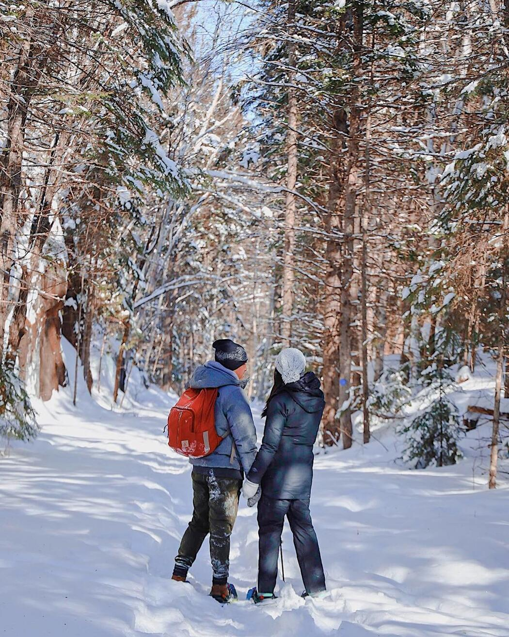 Couple holding hands on a snow covered path in a forest.