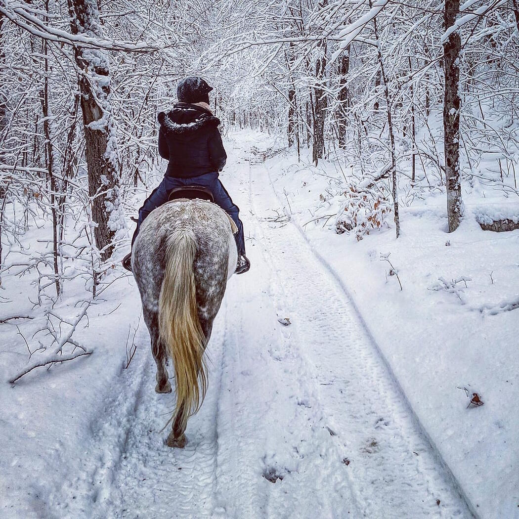 Woman riding on a horse in a snowy forest.
