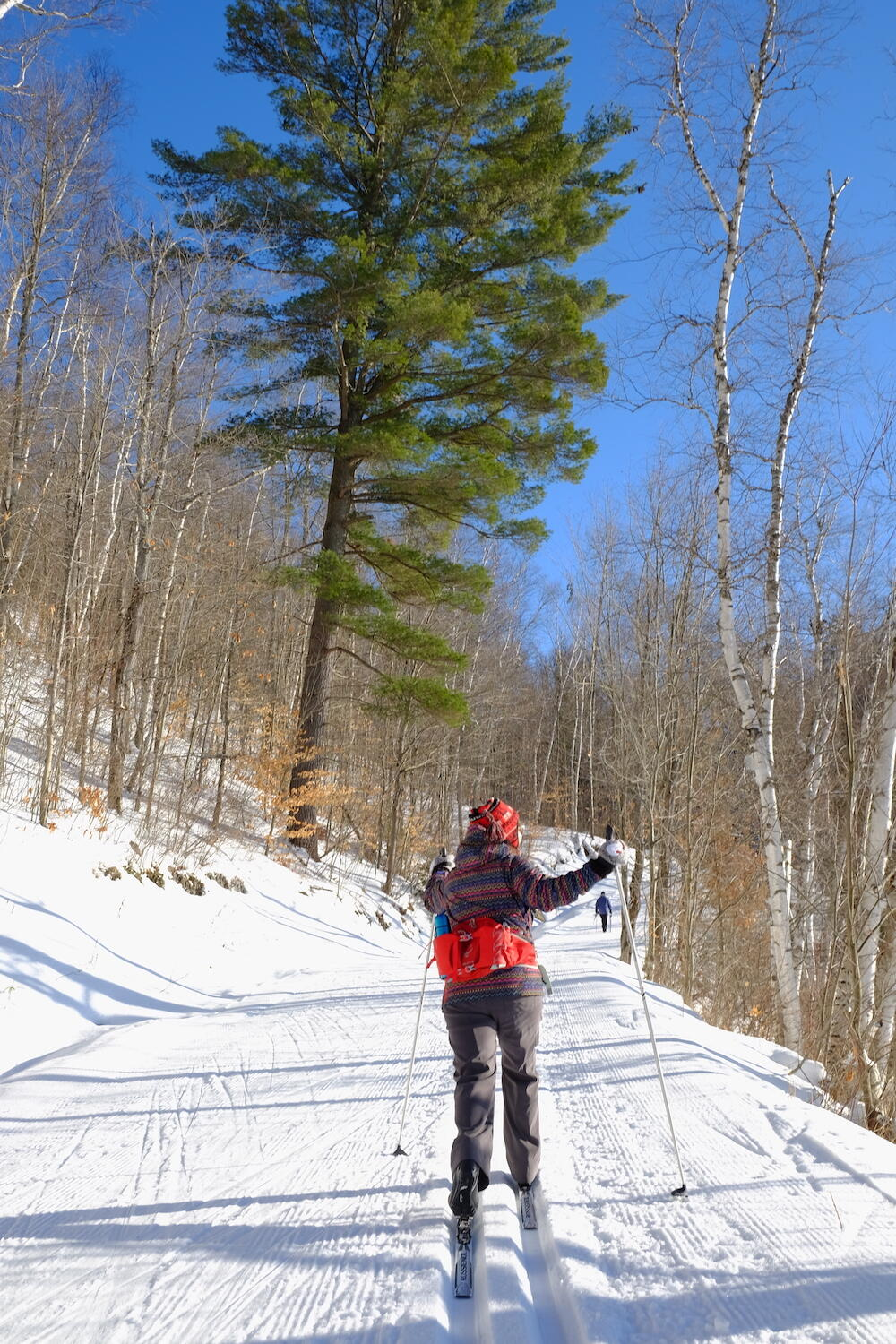 Woman cross country skiing on groomed trail.