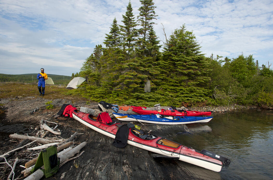 Group of kayaks pulled up on shore at a wilderness campsite.